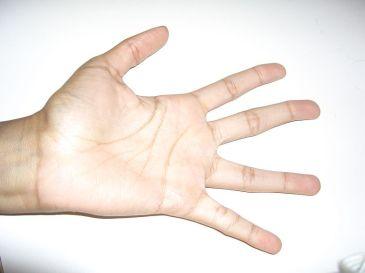 Monica's Hand