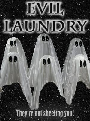 Evil Laundry