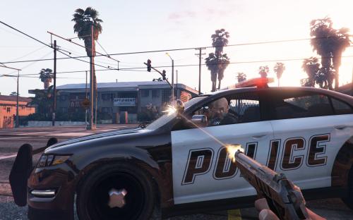 Cop Shooting